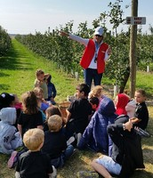 Learning about apple trees