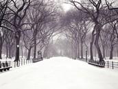 New York Winter