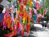 Tanzaku tradition.