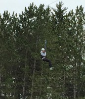 High in the trees, taking a risk!