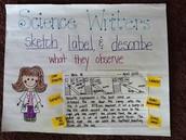 Writers Write to Inform!