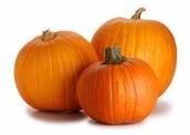 Pumpkin Donation