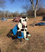 Hey, who's inside that cow costume??!
