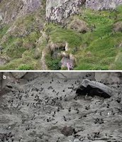 The Changes of the Aftermath of a Volcano Eruption