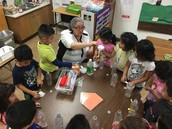 Ms. Zamarron's dual language Pre-K class conducts a hands-on science lesson!