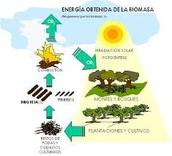 La energía de la biomasa y el sol