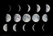 6th Grade Lunar Calendars