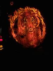 Tiger Trot Mania