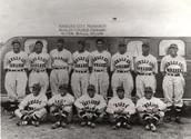 The Negro Baseball League