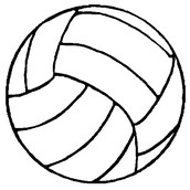 ~Volleyball~