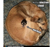 mnemonic pic of nucleus