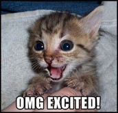 GET EXCITED!