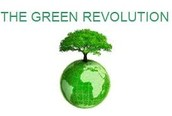 Two Positive Results of the Green Revolution in India