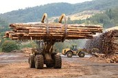 Logs being carried