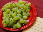 or make us say its name (The Grapes of Wrath)