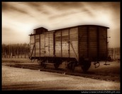 Concentration camp train