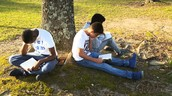 Reading picnic 2016