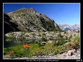 Lac des Vens