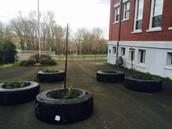 Tire garden now