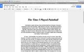 Paintball essay