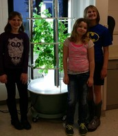 Tower Garden in Cooking club