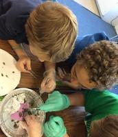 Examining owl pellets