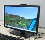 Staying Safe on Minecraft