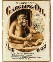 Merchants Gargling Oil 1883