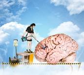 Neural Housekeeping