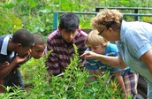 Authentic, Project-Based Learning