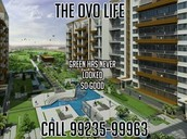 The Ovo Life Pune Is Enough Satisfying To Live Your Dream
