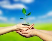 Environmentally  and health aware