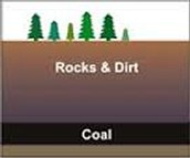 How is Coal formed?