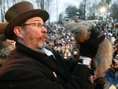 Groundhog's Day Writing!