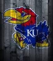 Ku Logo Bird