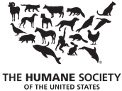 Animal Welfare Interest Meeting - Wednesday, Feb. 17th at 8:00PM
