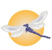 Sponsored by Dragonfly Reiki
