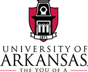 #3 The University of Arkansas