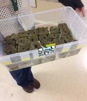 2nd Grade Aquaponic Investigation