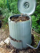 What to put in compost