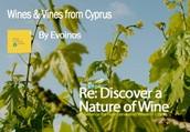 Evoinos   Cyprus Wine