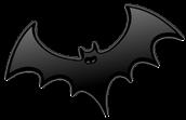 Bat Research and Bat Books