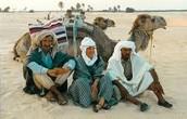 Bedouins of the Sahara
