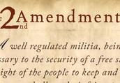 The Second Amendment