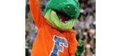 University of Florida #3