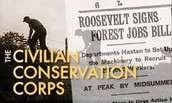 "They often were called ""Roosevelts tree army"""
