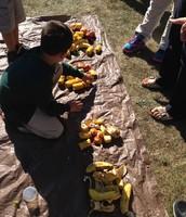 4th Grade sorting compost!