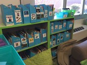 Enhancing Your Classroom Library