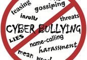 Types of Cyberbullying