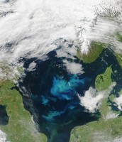 sea on earth